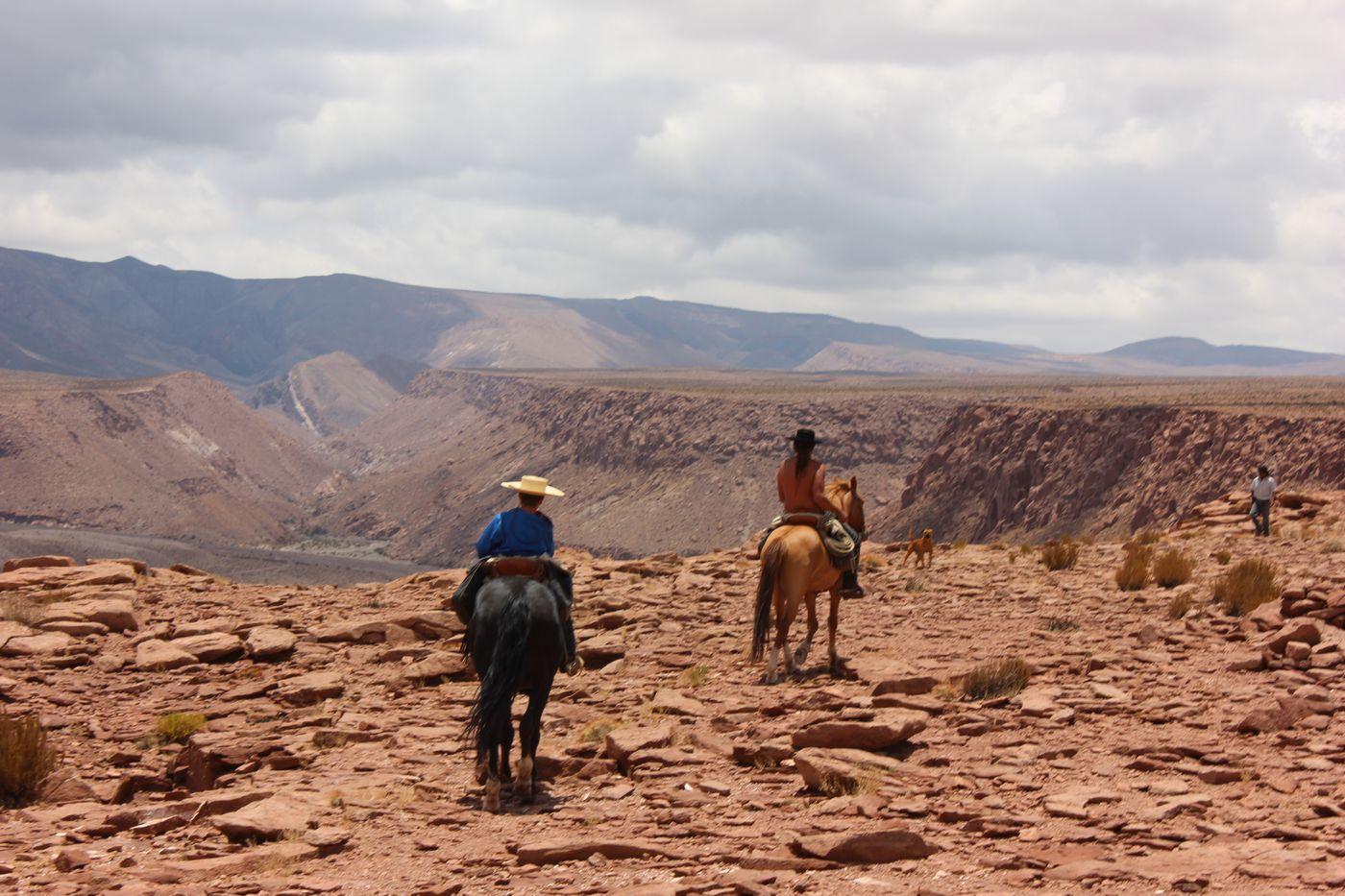 Wild Atacama Trail itinerary.