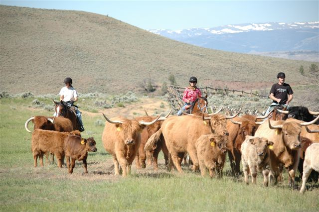 Range Rider Week (with Cattle) itinerary.