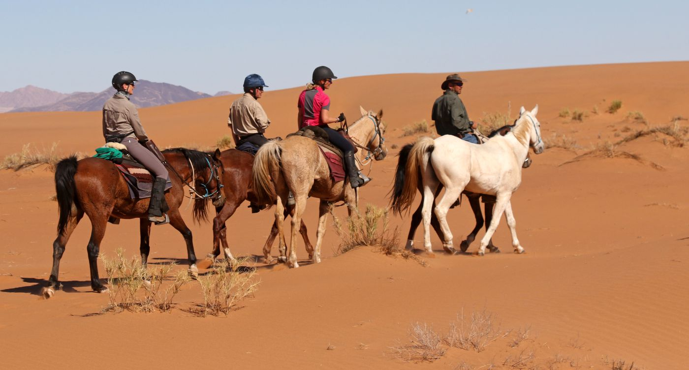 Wild Horses Safari itinerary.