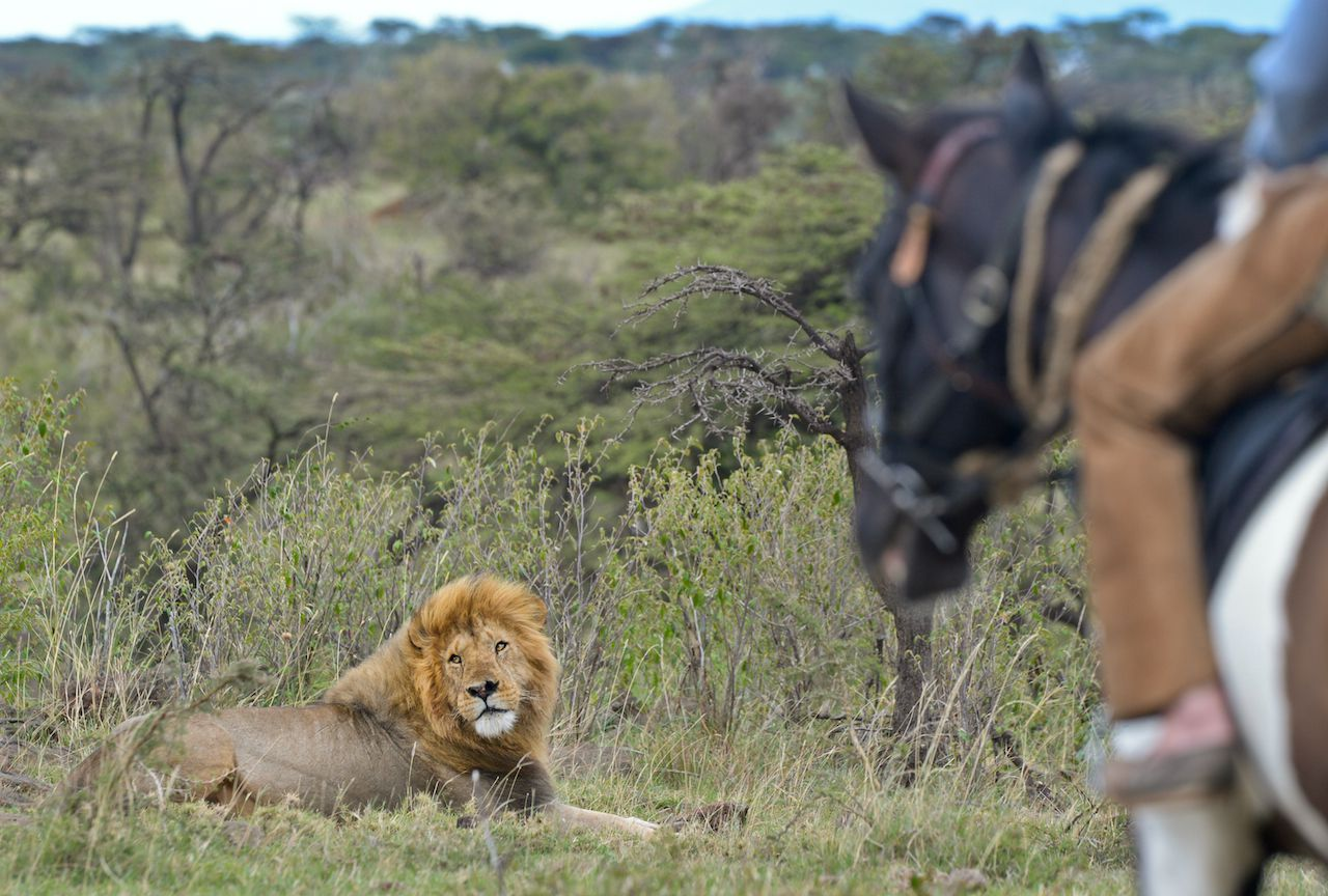 Masai Mara Ride itinerary.
