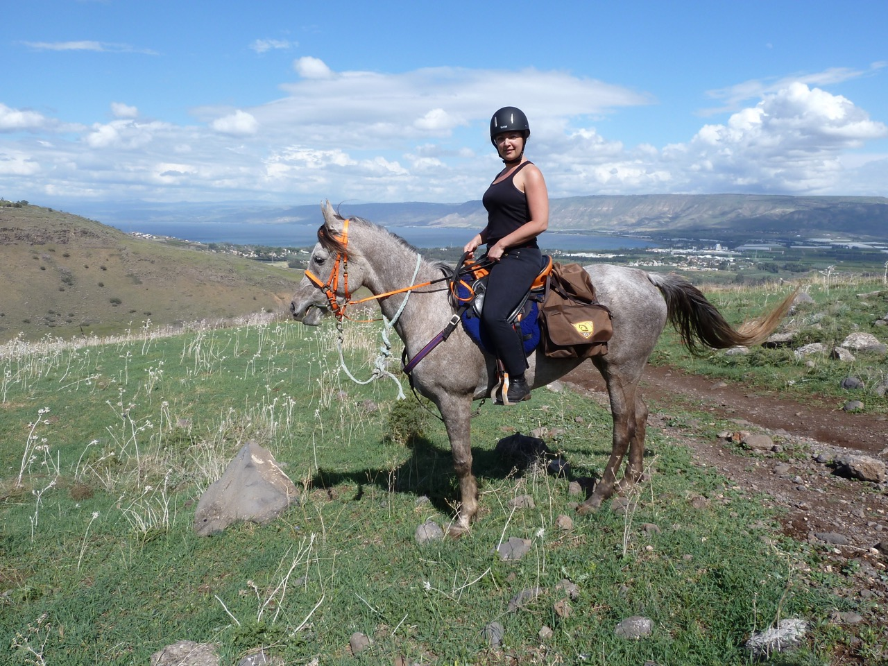 Jew Detector: Horse Riding Holidays In Israel (3 Destinations)
