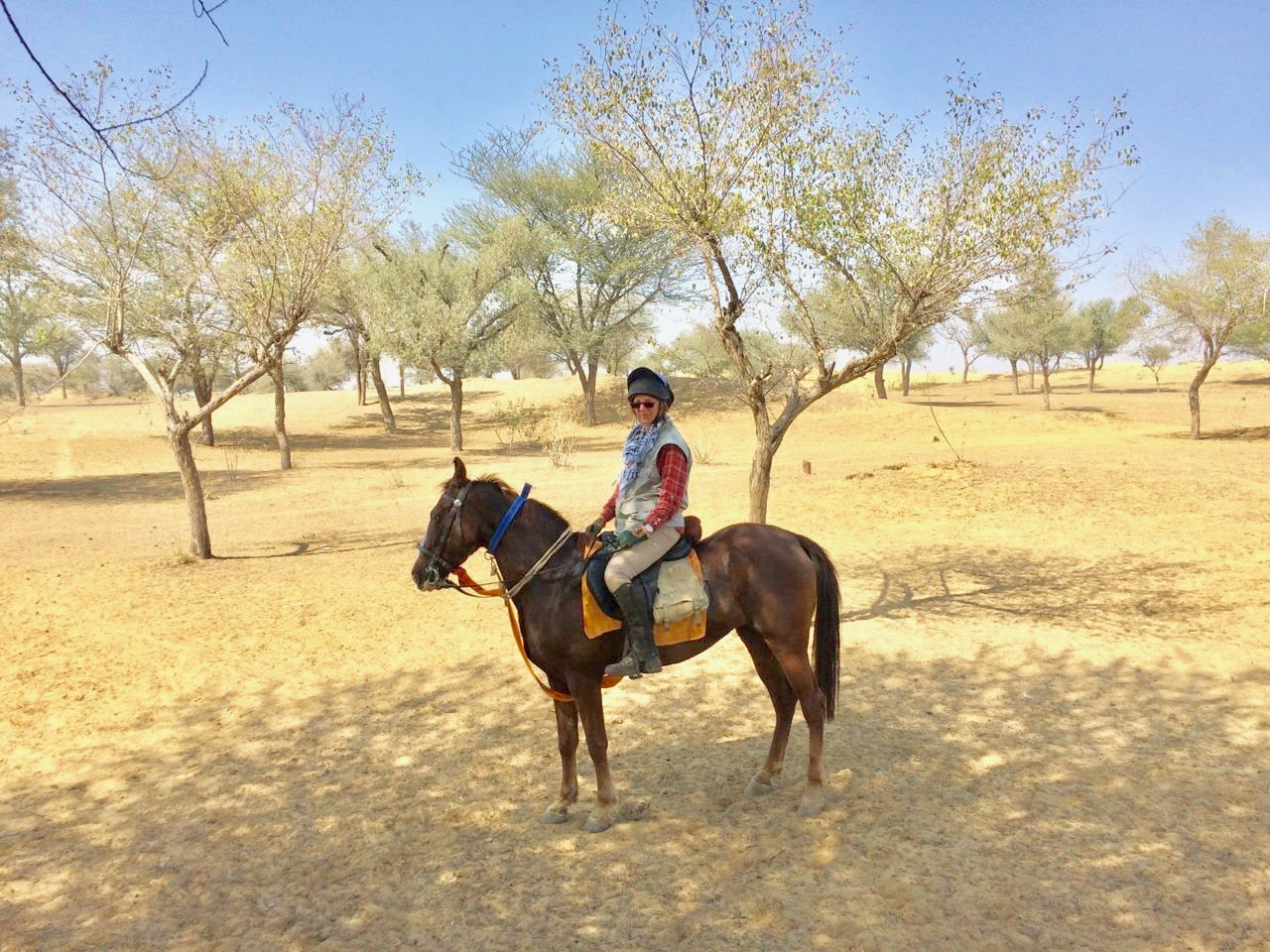 Tours Of The Raj Riding Holiday In India Far And Ride