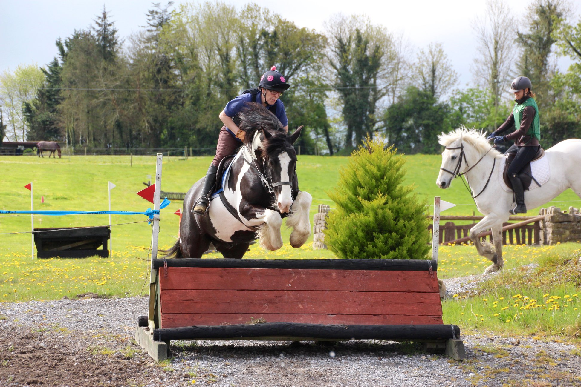 Flowerhill Equestrian Riding Holiday In Ireland Far And Ride