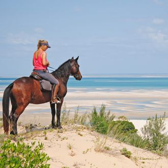 Photo from the Mozambique Horse Safaris ride
