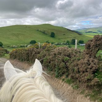 Photo from the Ceiriog Valley ride