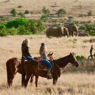 Photo from the Borana ride