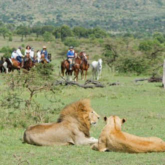 Photo from the Offbeat Safaris ride