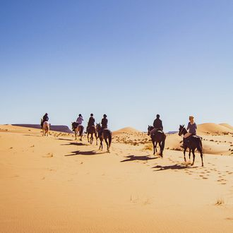Photo from the Sahara Desert Trails ride