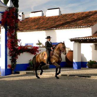 Photo from the Monte Velho Equo Resort ride