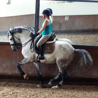 Photo from the Lusitano Dressage ride