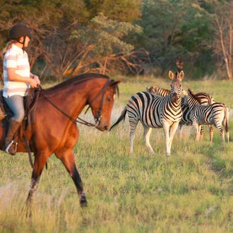 Photo from the Horizon Horseback Adventures and Safaris ride