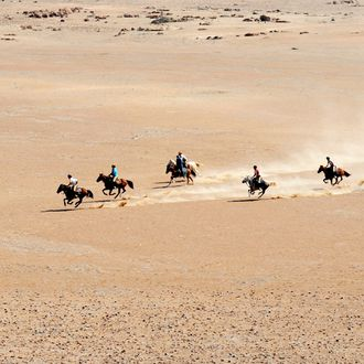 Photo from the Namibia Horse Safari Company ride