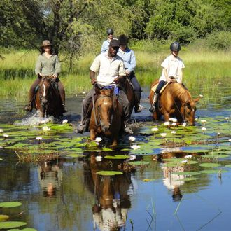 Photo from the Thamalakane River Ride (Ride Botswana) ride