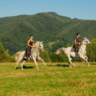 Photo from the Transylvania Trails (Equus Silvania) ride