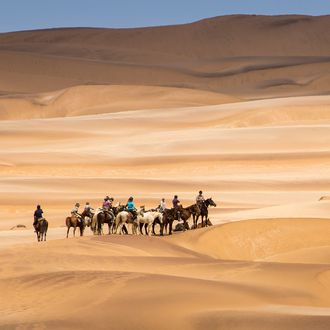 Photo from the Namibia Horse Safari Company ride