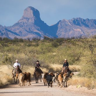 Photo from the Arizona Hacienda Ranch ride