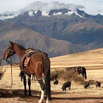 Photo from the Sacred Valley ride