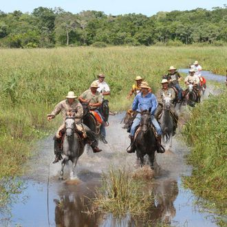 Photo from the Pantanal Safari ride