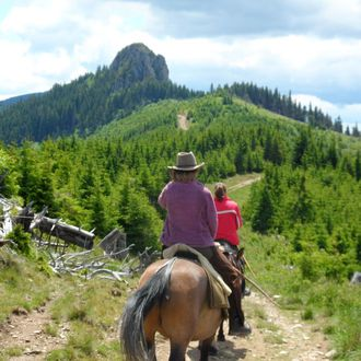 Photo from the Carpathian Mountain Trails ride