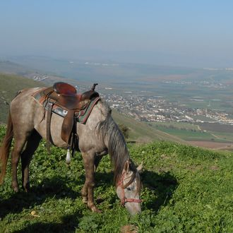 Photo from the Land of Galilee ride