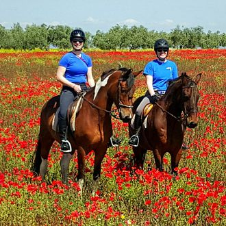 Photo from the Epona Dressage and Trails ride