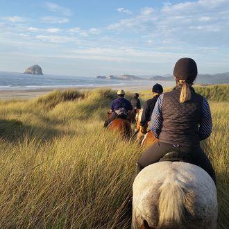Photo from the Oregon Coast & Winelands ride